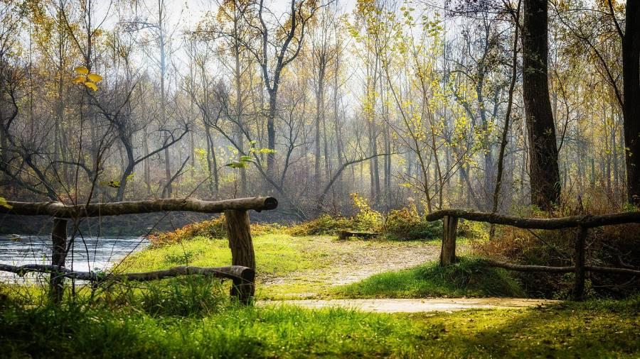 EU-Projekt vernetzt Schutzgebiete am Grünen Band