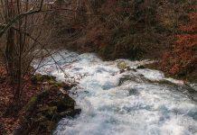 Unterstützung für Vorarlberger Gemeinden bei Wildbach- und Lawinenverbauung